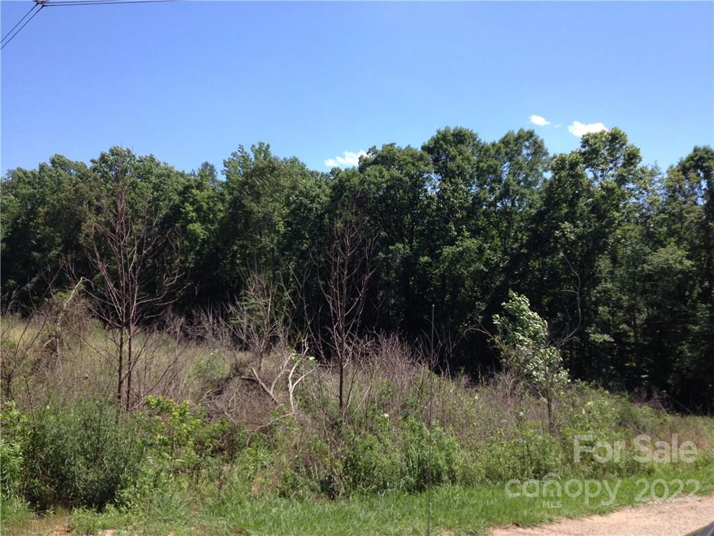 Little River Trail, Indian Land, SC 29707, MLS # 3183811