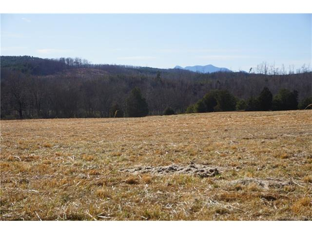 1714 Union Road, Rutherfordton, NC 28139, MLS # 3359080