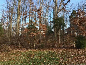 Treetops Drive, Stanley, NC 28164, MLS # 3363183
