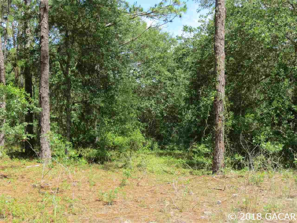 TBD-SE-108-Terrace-Morriston-FL-32668
