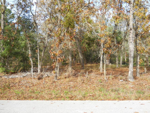 SE-153-Place-Summerfield-FL-34491