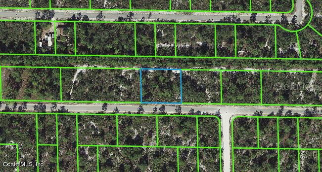 3337-Rhododendron-ROAD-Lake-Placid-FL-33852