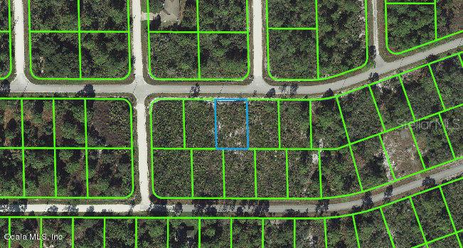 1102-Archie-Summers-ROAD-Lake-Placid-FL-33852