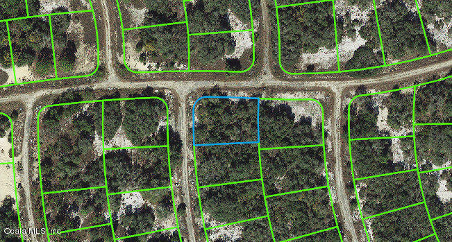 407-Crown-DRIVE-Lake-Placid-FL-33852