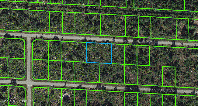 3516-Rhododendron-ROAD-Lake-Placid-FL-33852