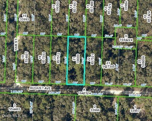 33489-August-AVENUE-Webster-FL-33597